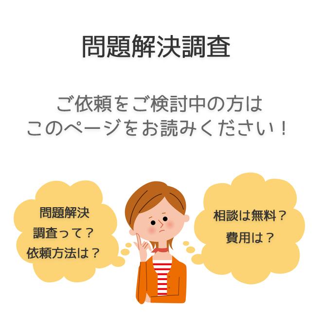問題解決調査(依頼法・料金事例)